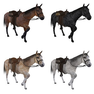 3d pack rigged wild west