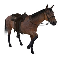 max rigged wild west horse saddle