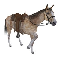 rigged wild west horse saddle max