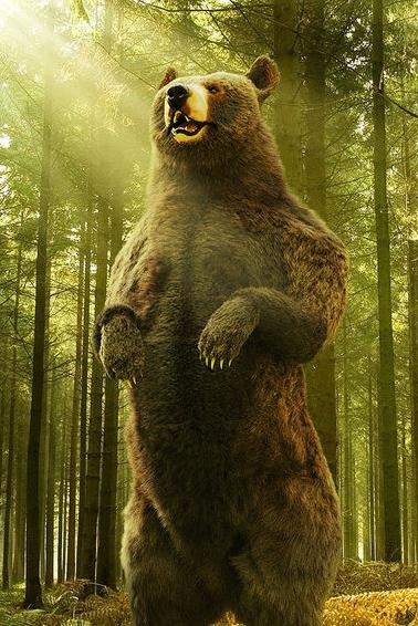 3d photorealistic bear fur