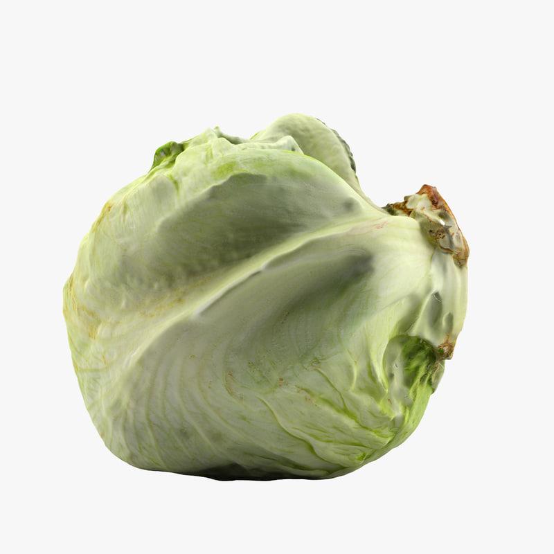 3dm lettuce scan