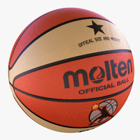 maya molten basket ball