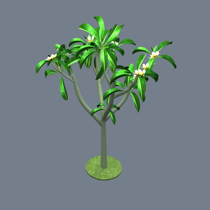 plumeria flower 3d max