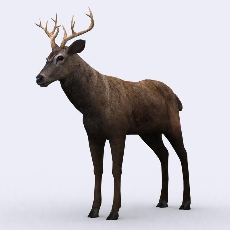 3ds max wild animal - deer