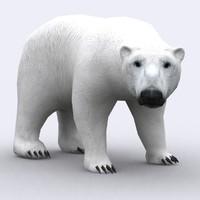 3d wild animal -