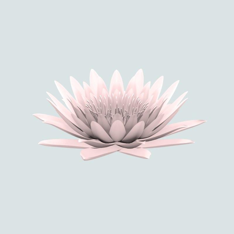 3ds flower nelumbo nucifera
