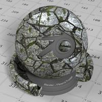 Stone Tile Granite Moss Lichen 1