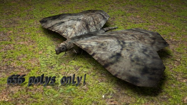 animations butterfly wings flying 3d model