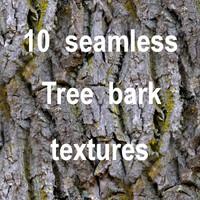 Tree Bark Collection 12