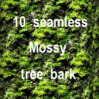 Mossy Tree Bark Collection 6