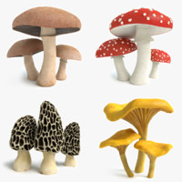 set mushrooms 3d model