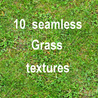 Grass Collection 4