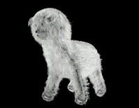 3d model white dog