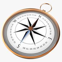 maya compass