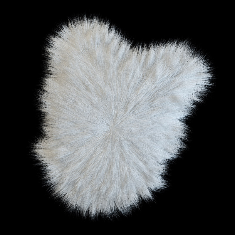 max longhaired sheep skin