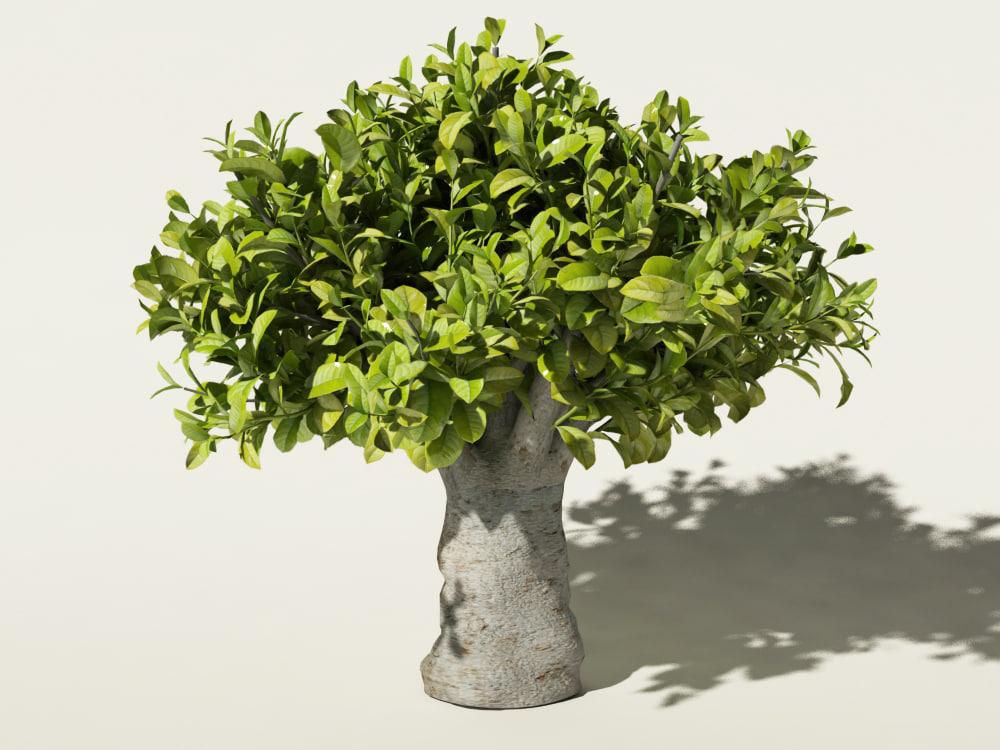 3ds max tea bush