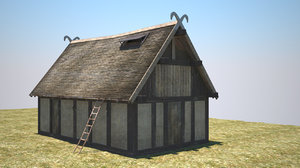 viking building 3d model