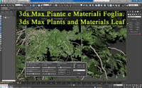 3ds Max Plants and Materials Leaf _3ds max Piante e Materiali Foglia