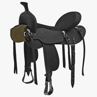 saddle 3 3d model