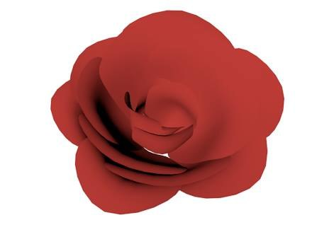 rose flower head 3d model