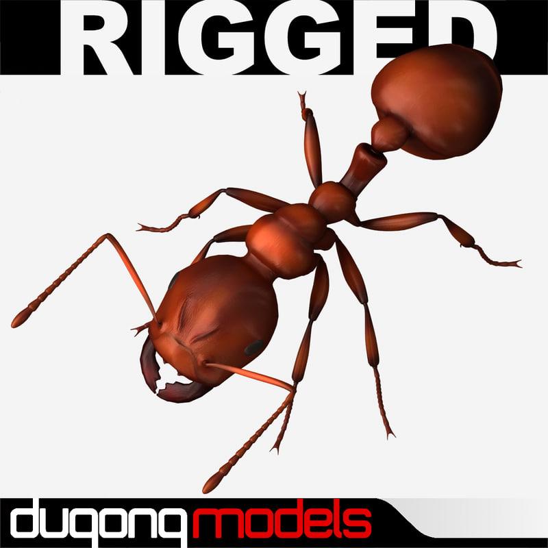 3d model dugm05 ant