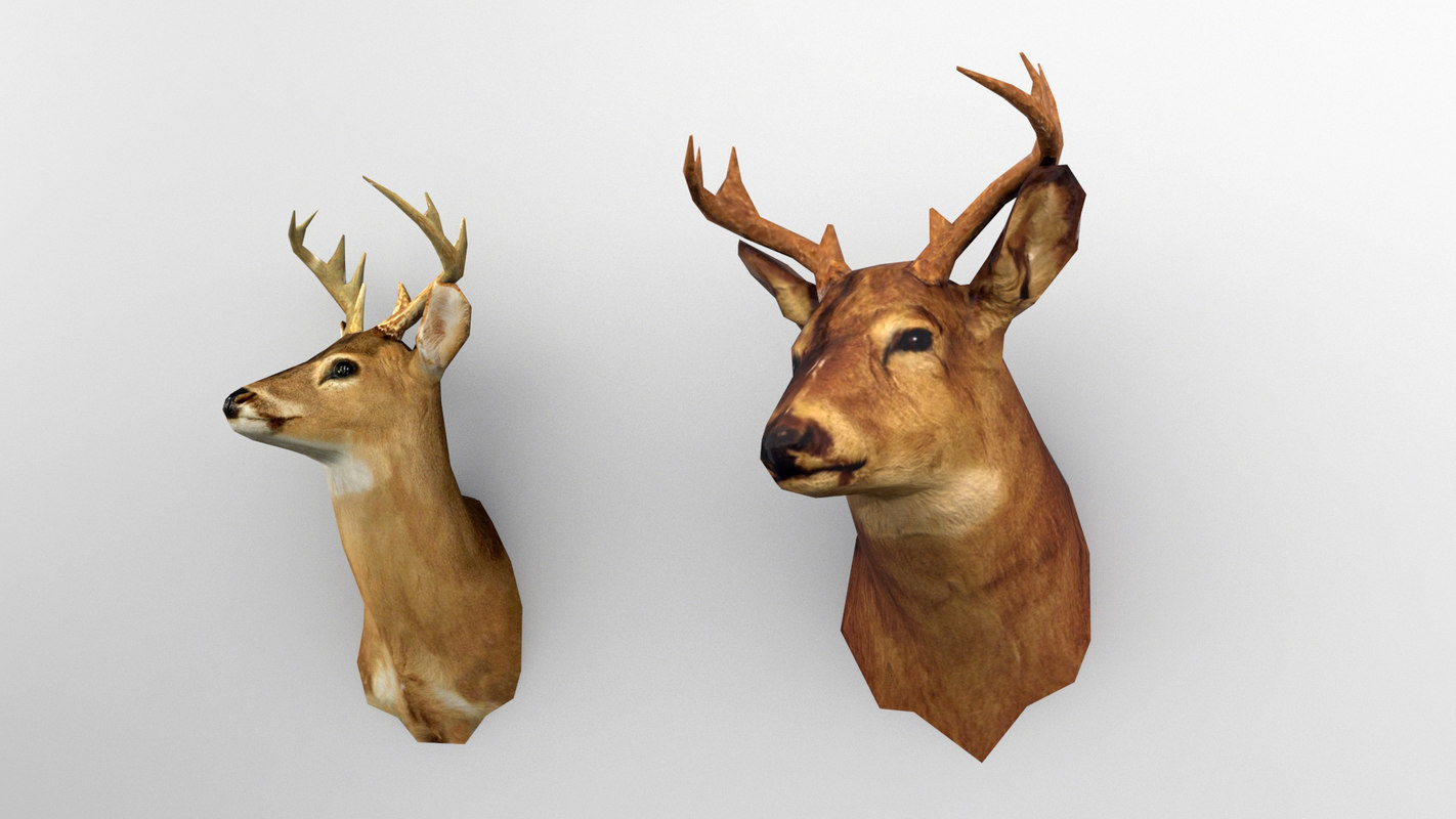 3ds max taxidermy deer