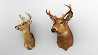 Taxidermy deers (low poly)