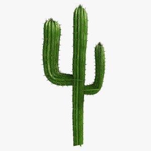 3dsmax cactus transparent ready