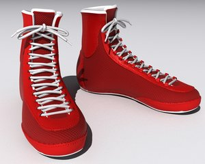boxing shoes max
