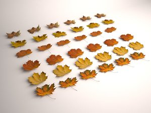 3d model autumn leaves