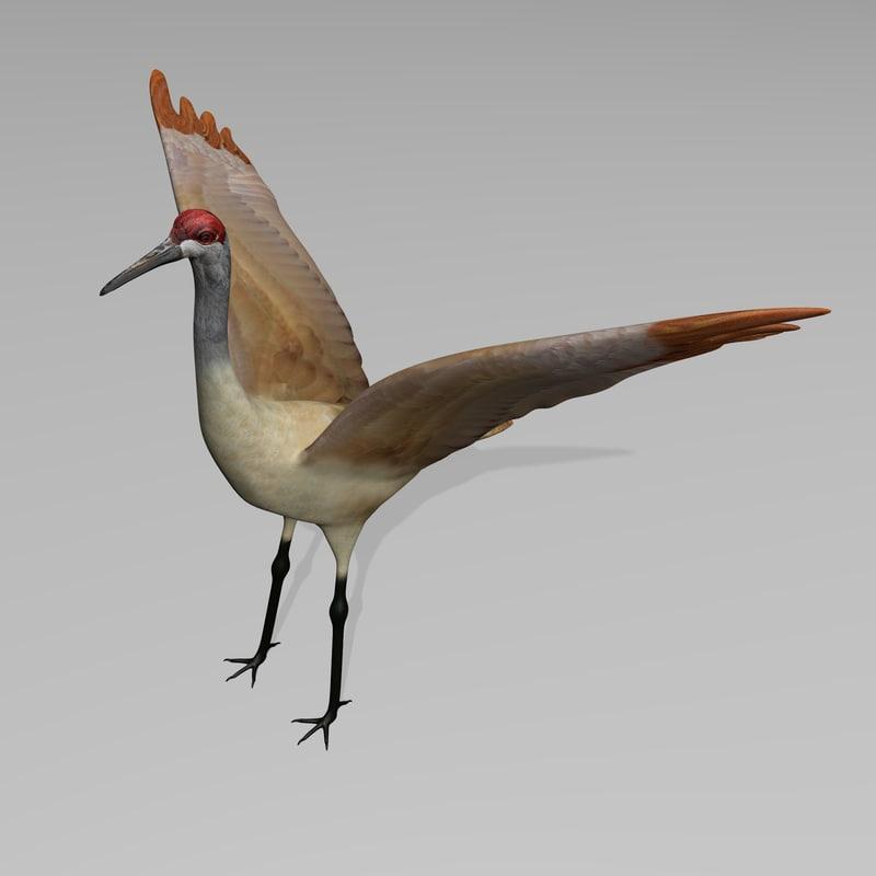 3ds max sandhill crane