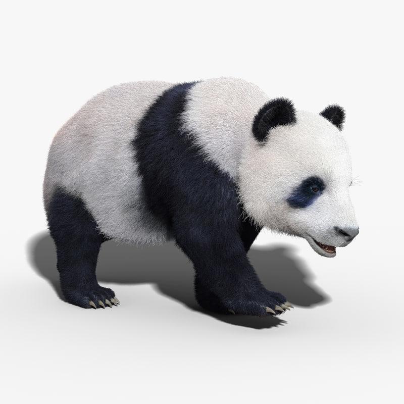 3ds max panda bear fur rigged