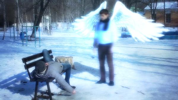 3d model realistic wings