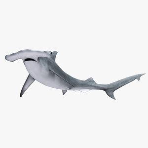 3ds max hammerhead shark