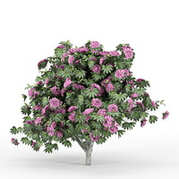3ds max rhododendron