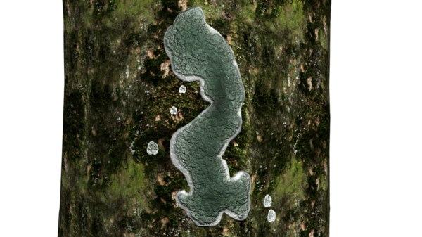 3d trichoderma genus fungi