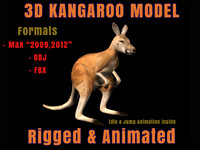 Kangaroo 3D Model Rigged Animated