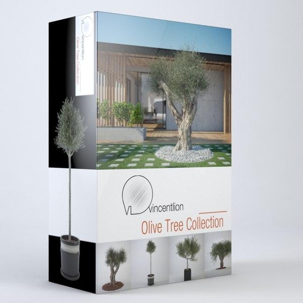 3d model olive tree