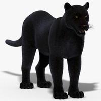 panther fur 3d model