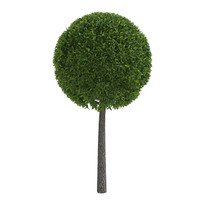green deciduous tree 3d model