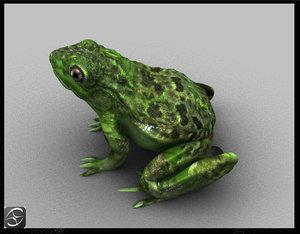 frog 3d obj