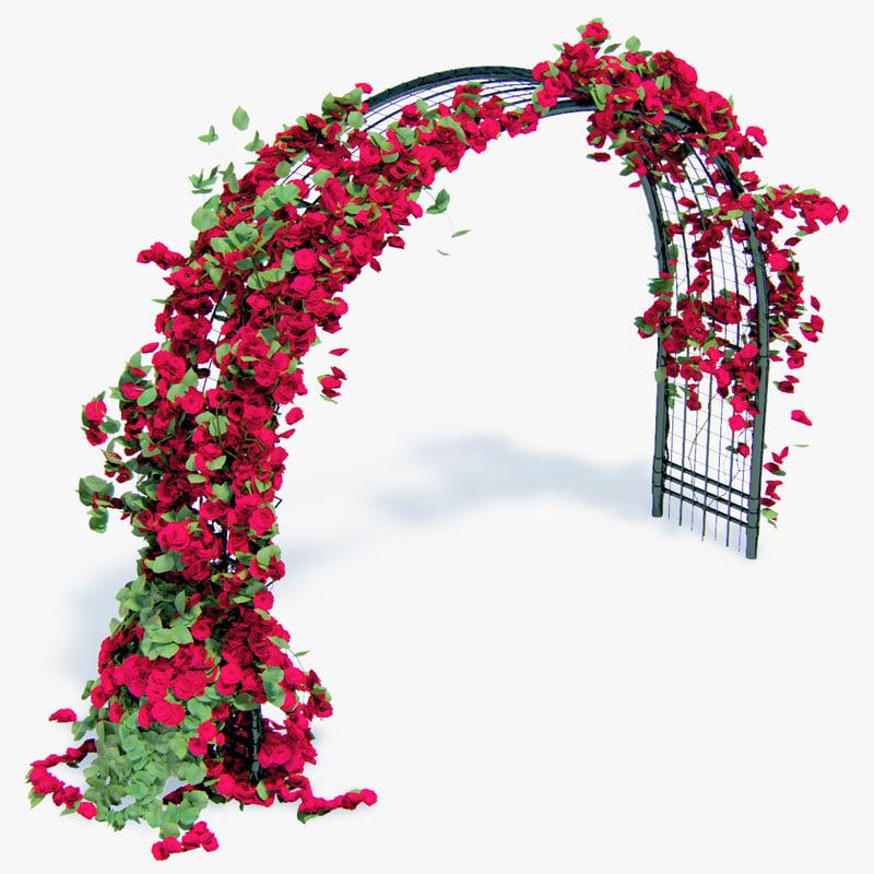 3d model climbing roses flower