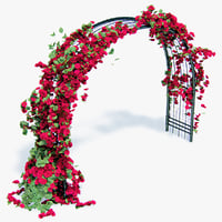 Pergola Climbing Roses With Flowers Ivy Arched