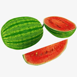 max watermelon half slice