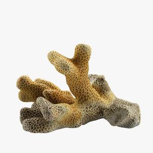 coral 3d c4d