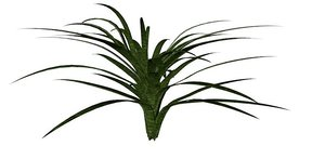 grass xml stl 3d model