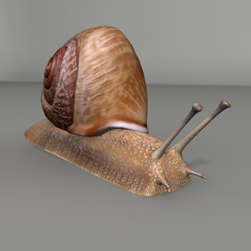 snail 3ds