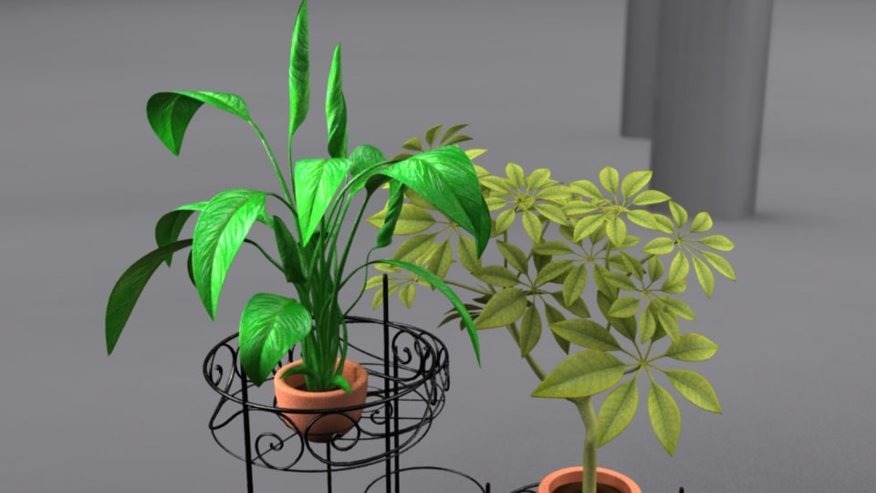 obj house plants