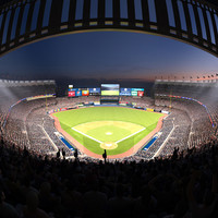 yankee stadium audience animations 3d model