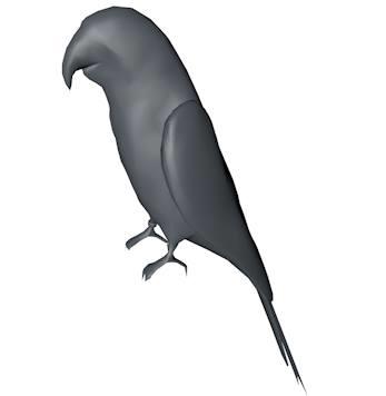parrot base 3d model